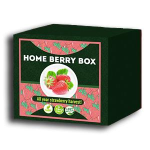Home Berry Box zestaw do uprawy truskawek - aktualne recenzje użytkowników 2020 - jak używać, jak to działa, opinie, forum, cena, gdzie kupić, allegro - Polska